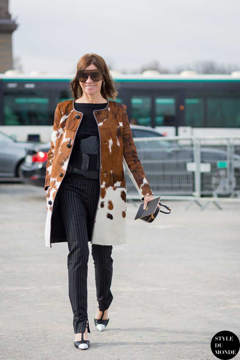 carine-roitfeld-by-styledumonde-street-style-fashion-photography_mg_9463-700x1050
