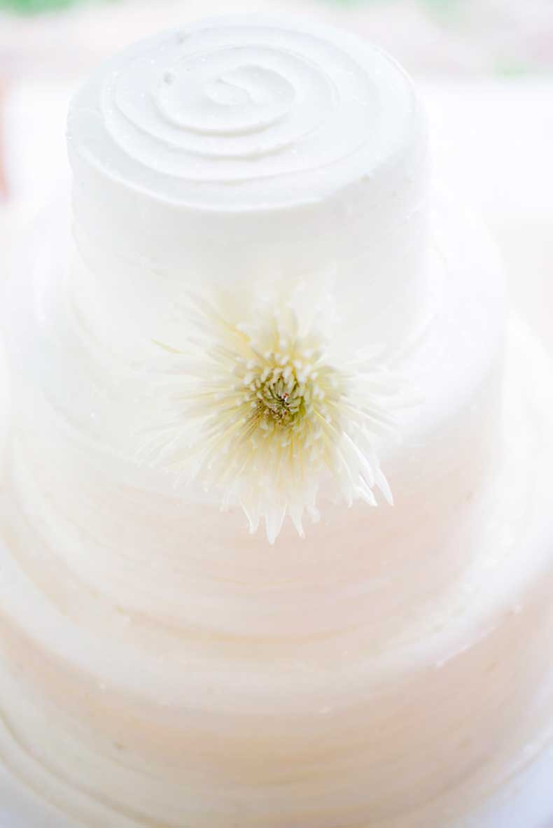arranging-one-large-chrysanthemum-sea-white-frosting